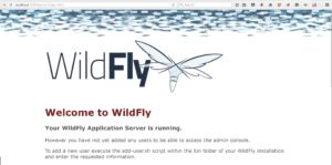 Installing Wildfly Java Application Server