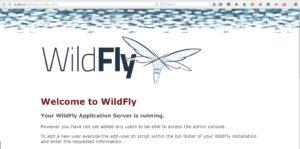 Installing Wildfly Java Application Server